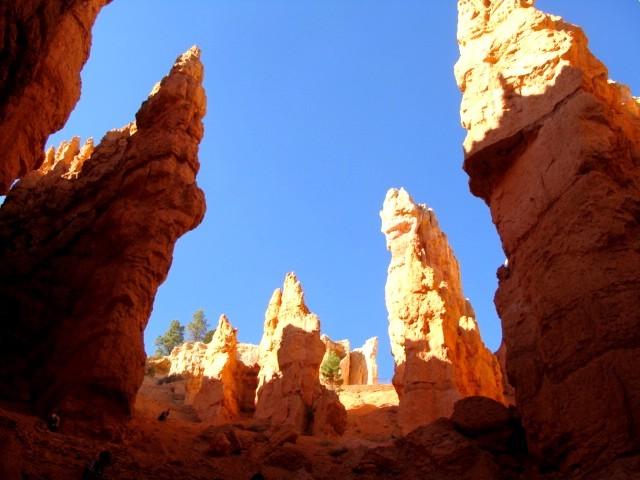 Hiken op de Navajoloop