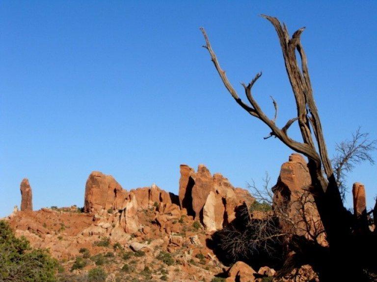 Hoofdfoto bij reisverhaal 'Arches National Park'