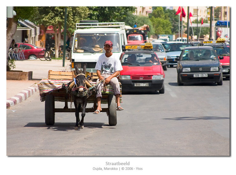 Beeld van de hoofdstraat in Oujda, waar ezelskarretjes het verkeer ophouden.