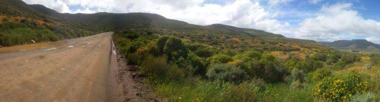 Hoofdfoto bij reisverhaal 'Road trip South Africa'