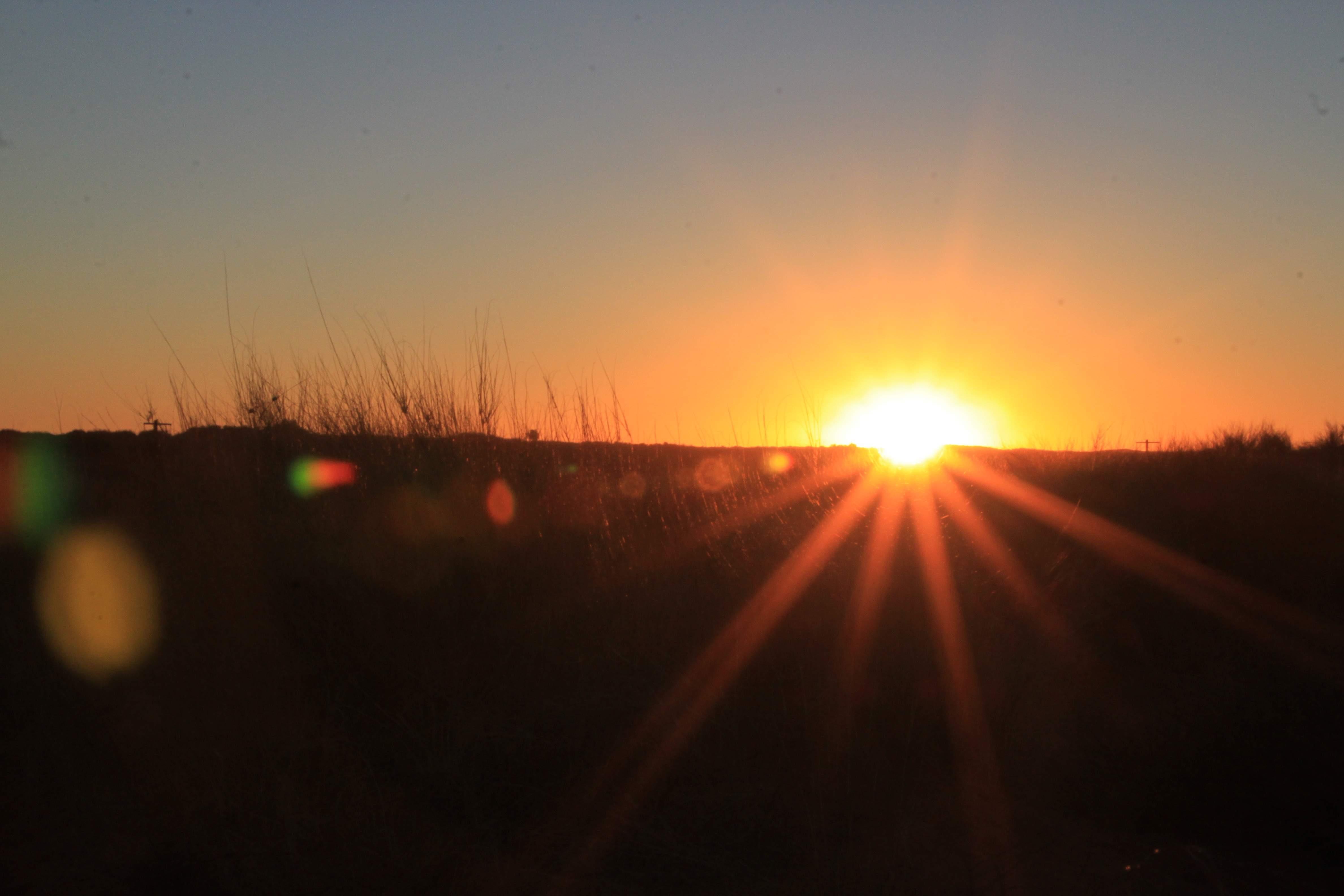 sunset in the Kgalagadi desert