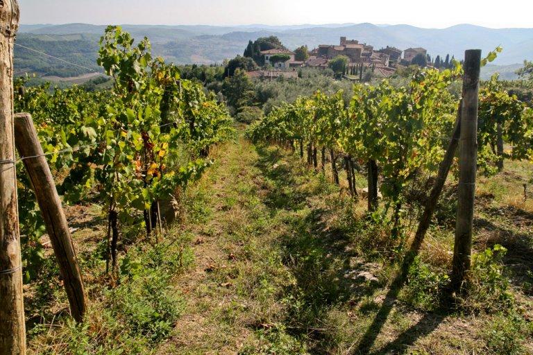 Hoofdfoto bij reisverhaal 'Verdwalen in de Chianti streek'