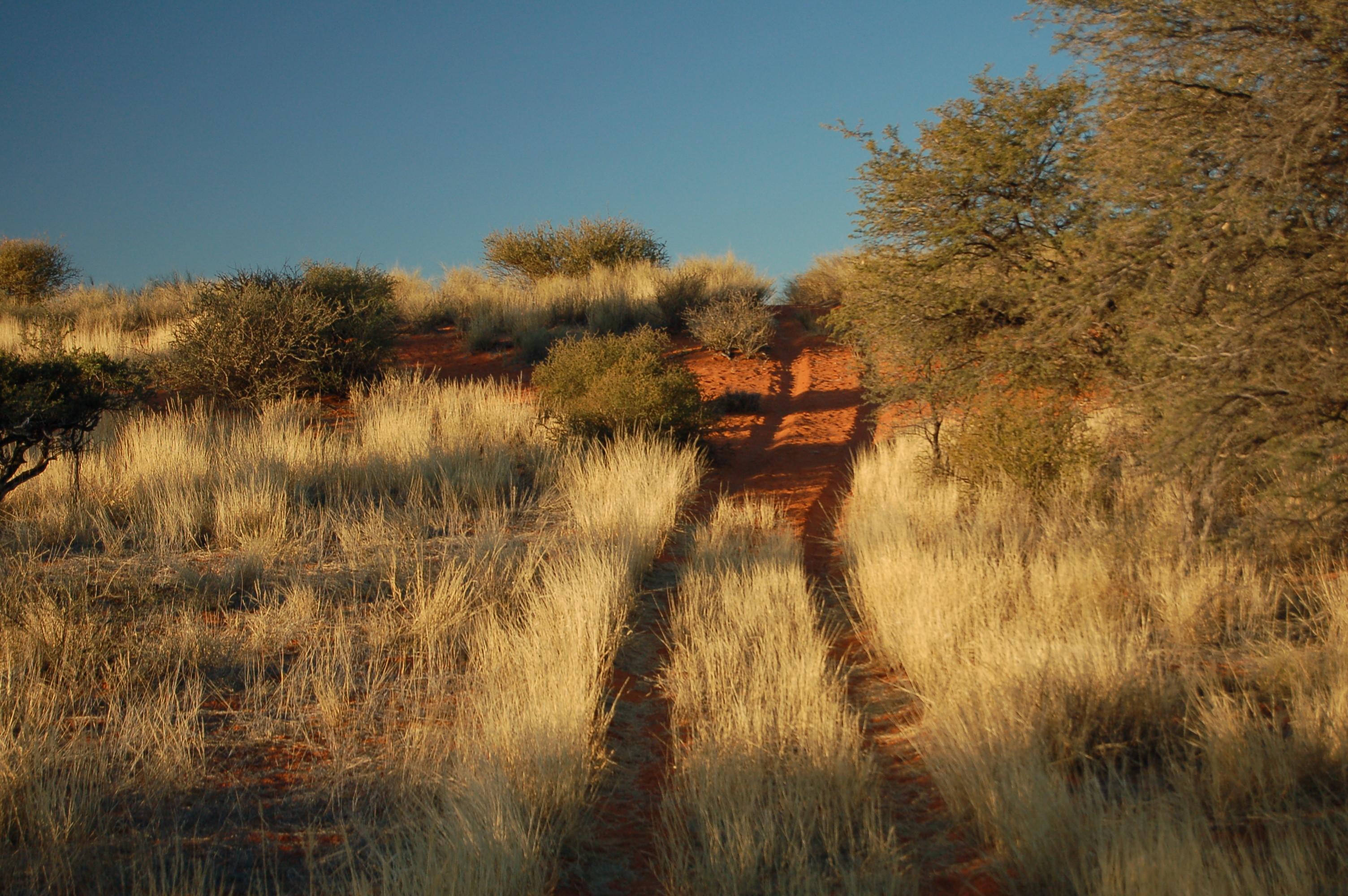Sundowner Drive: prachtige kleuren.