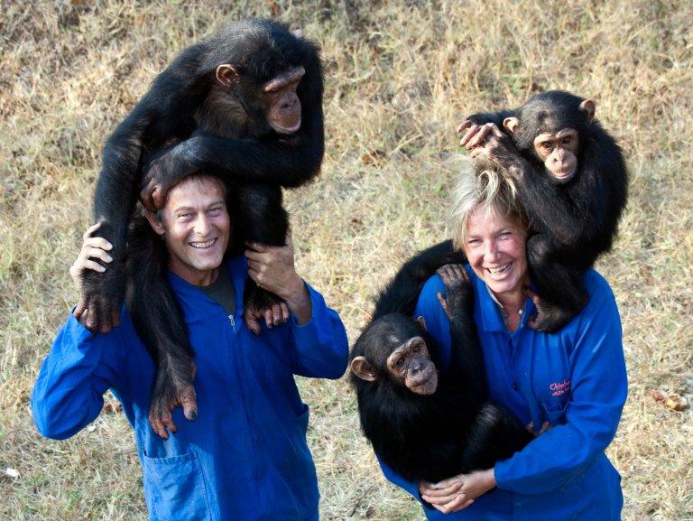 Hoofdfoto bij reisverhaal 'Verliefd op een aap...'