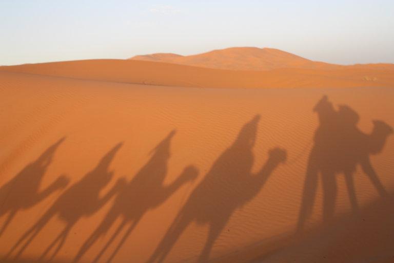 Op weg naar de Sahara.