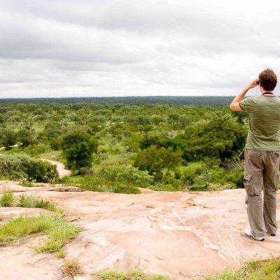 Voorvertoning Op de uitkijk in Kruger