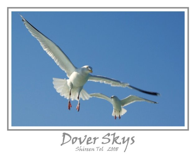 Dover Skys