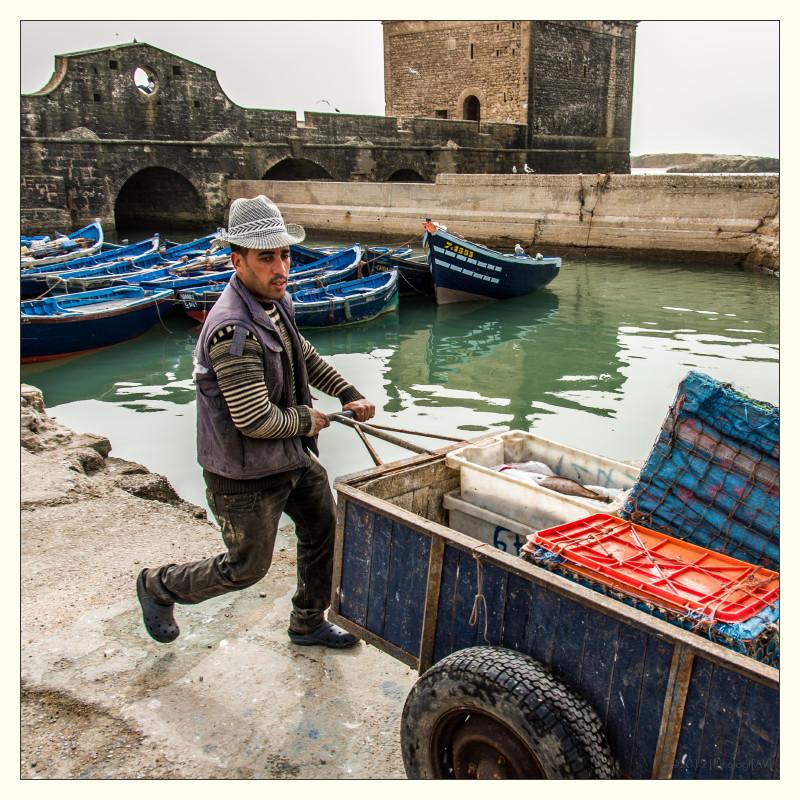 Visverwerking en handel in Essaouira