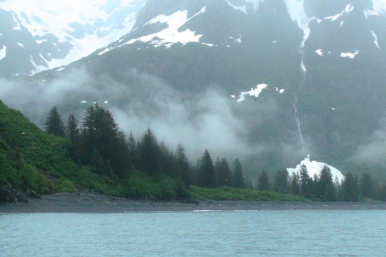 Hoofdfoto bij reisverhaal '5. Kenai Fjords vanuit Seward'
