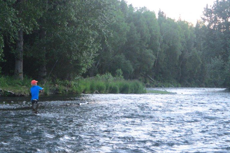 Vissen bij Cooper Landing in de Russian River. In juli zwemt er veel zalm.