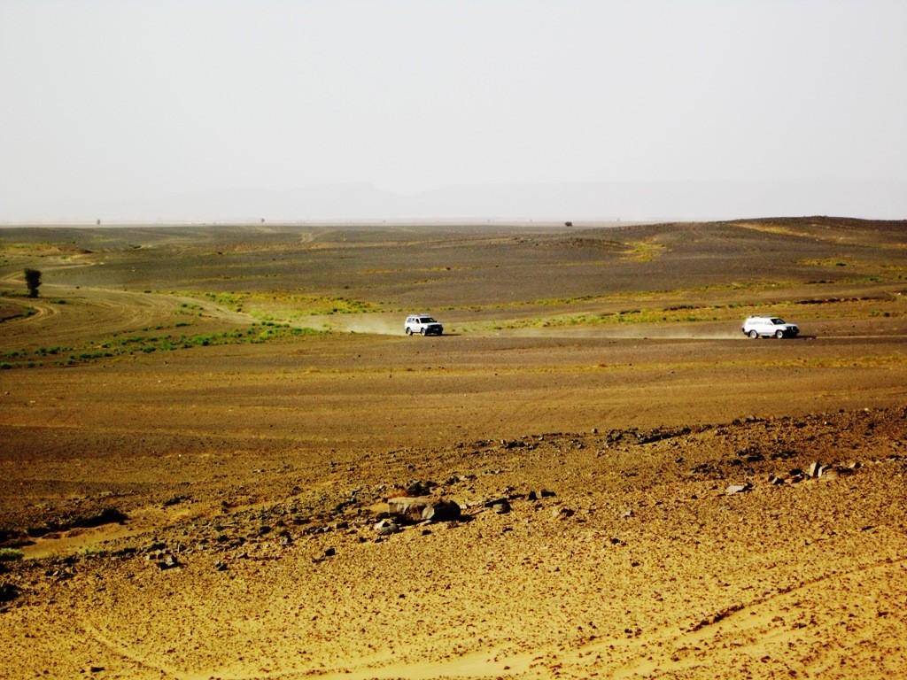 De landrovers waarmee we richting de opstapplaats van de kamelen scheurden !!