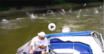 VIDEO: Karpers vallen aan