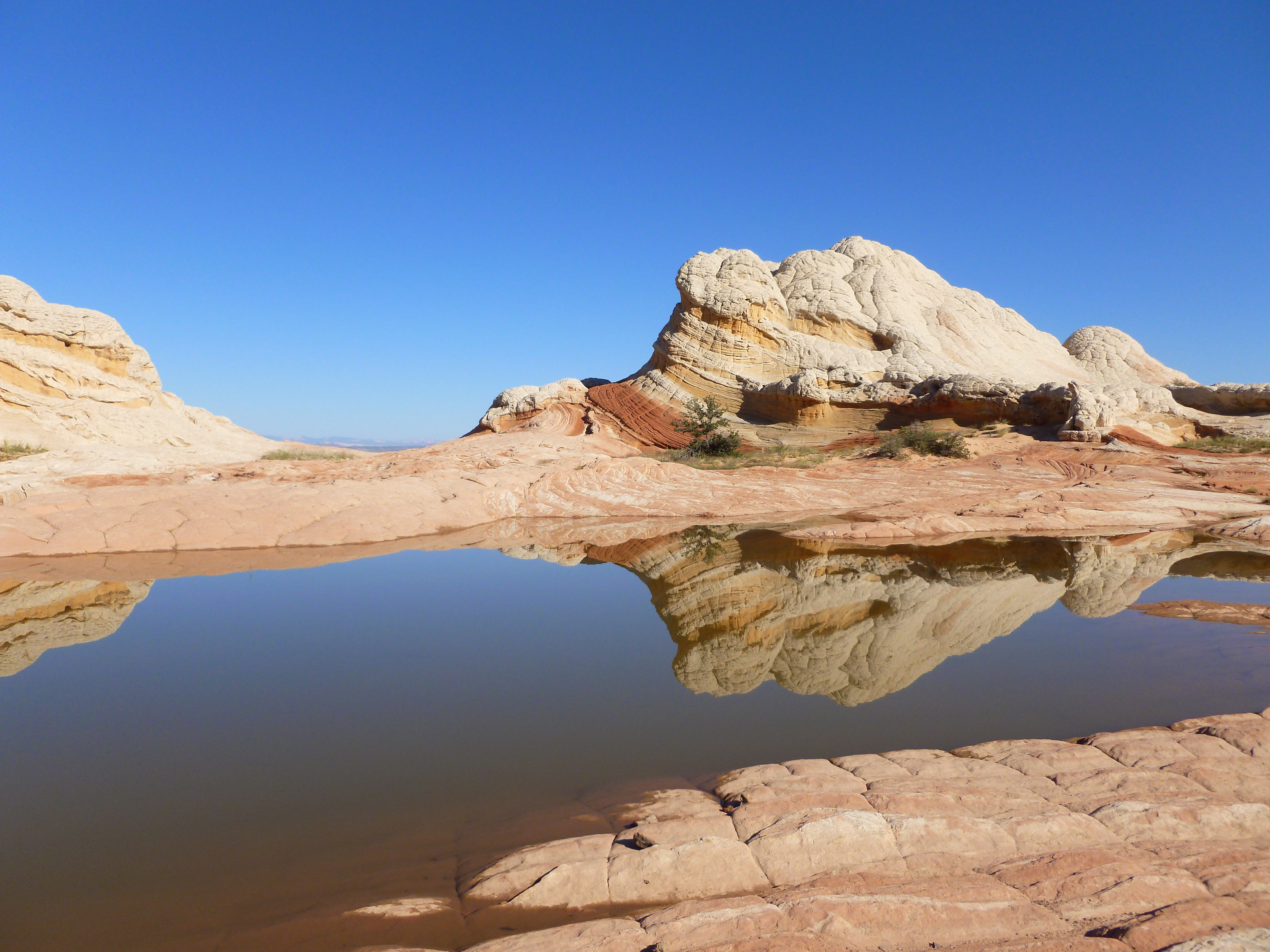 """In """"White Pockets"""" zijn in de rotsen kleine meertjes die door de hitte regelmatig droog komen te staan. De diertjes in het water overleven toch."""