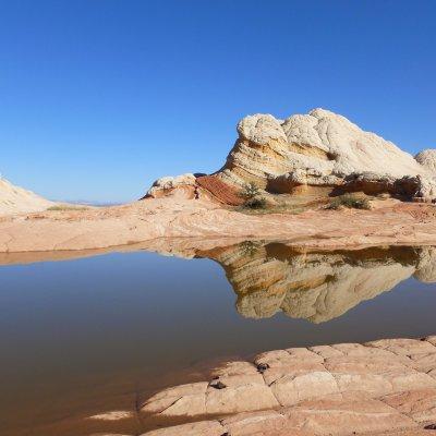 """Voorvertoning In """"White Pockets"""" zijn in de rotsen kleine meertjes die door de hitte regelmatig droog komen te staan. De diertjes in het water overleven toch."""