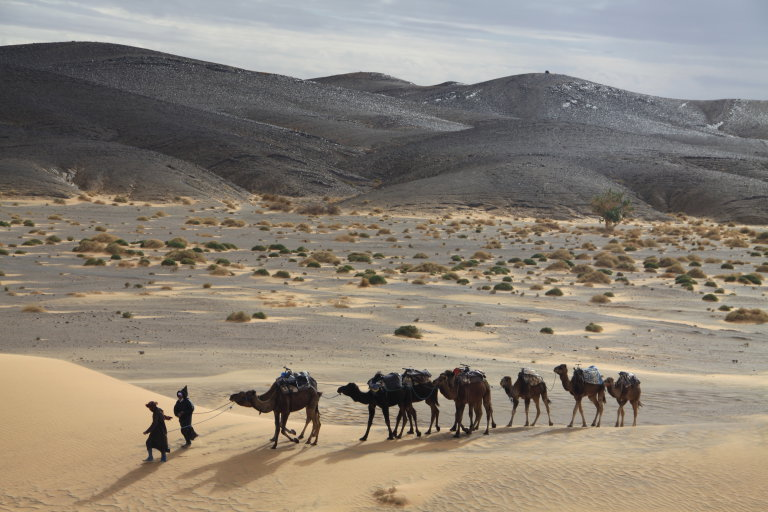 Hoofdfoto bij reisverhaal 'Sahara dreams'