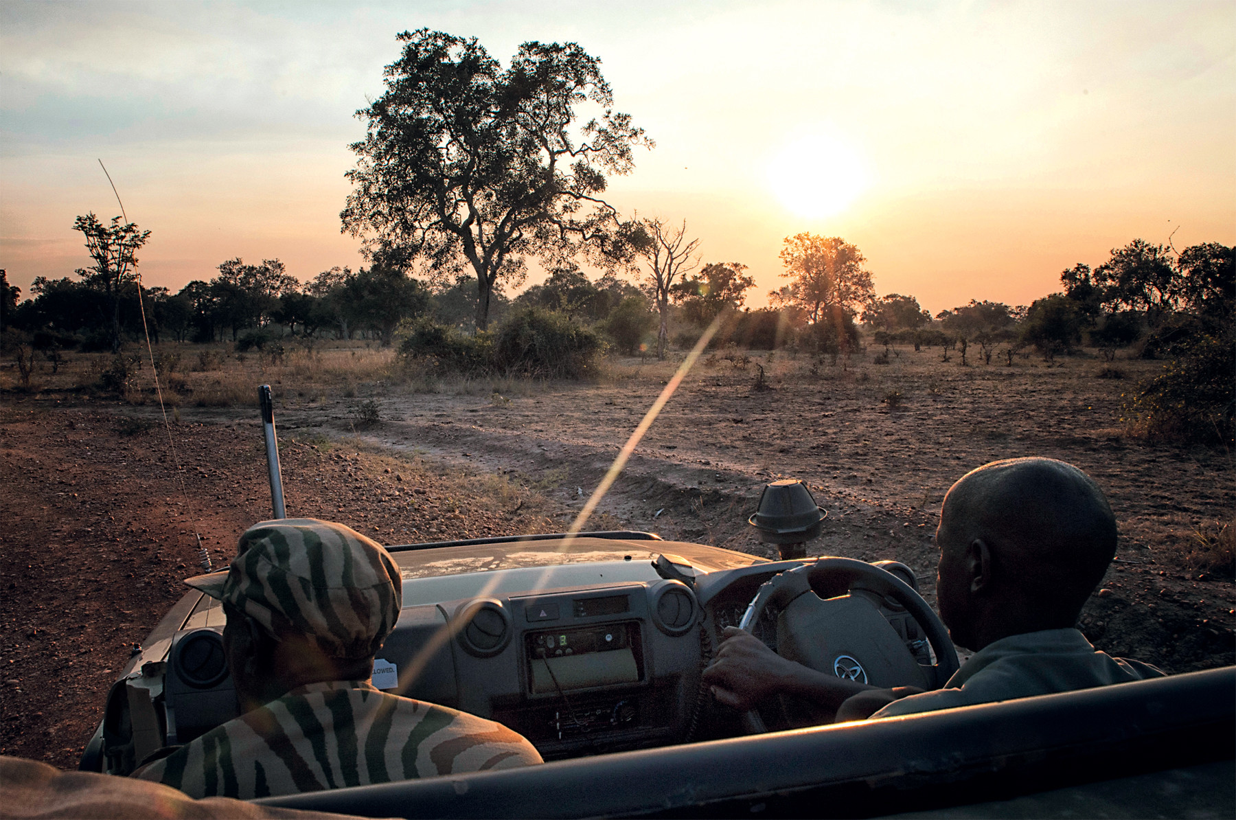 Op safarit in nationaal park South Luangwa in Zambia. Foto: Michael Dehaspe