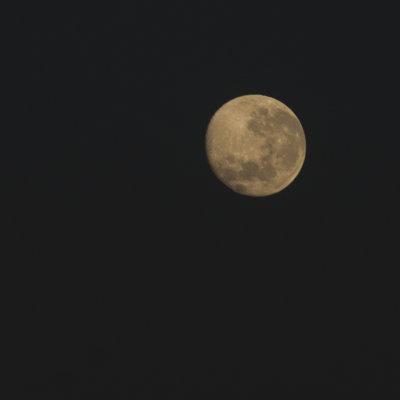 Voorvertoning En 's avond een prachtige volle maan