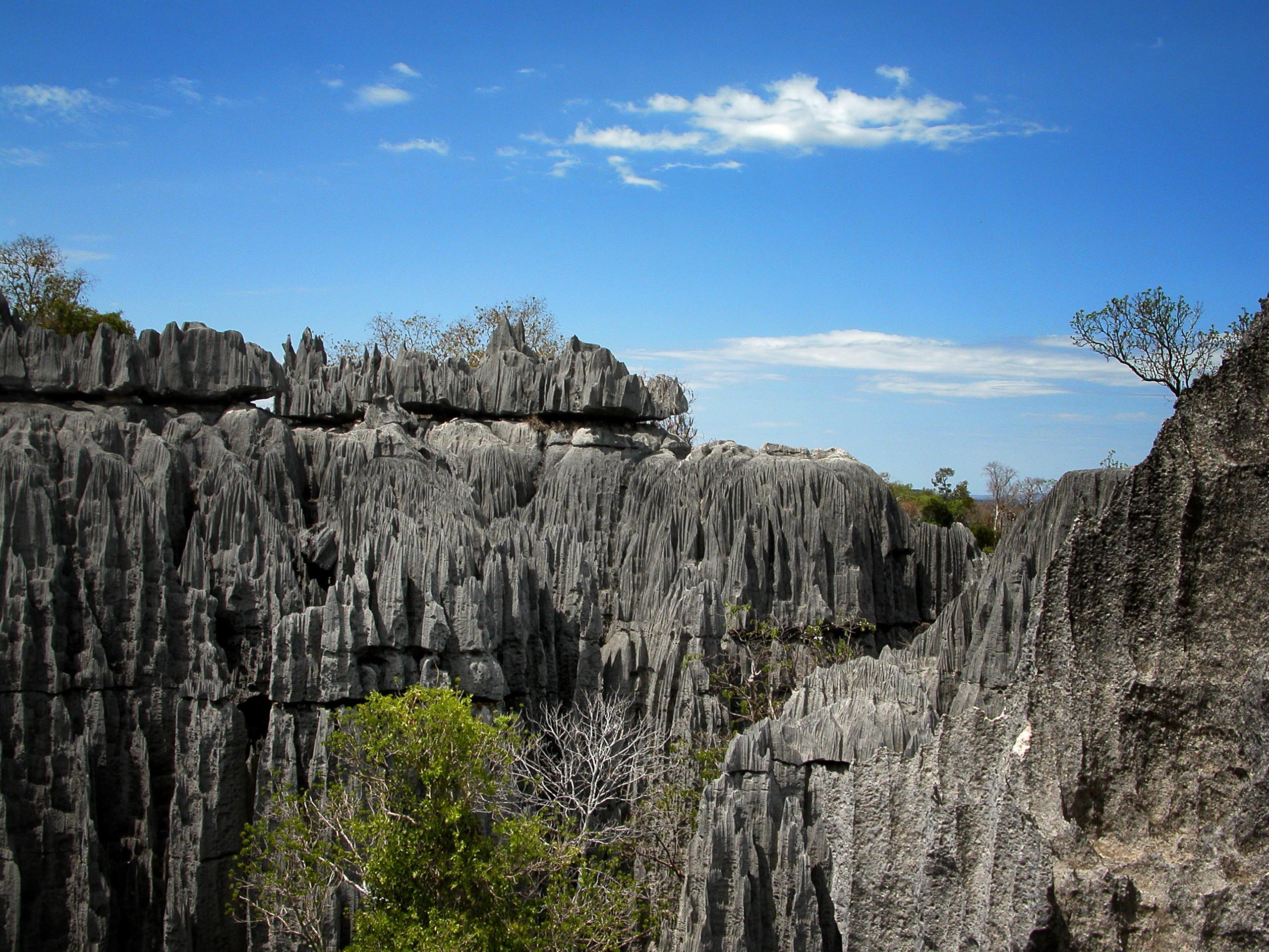 Uitzicht vanaf de top van de grote Tsingy.