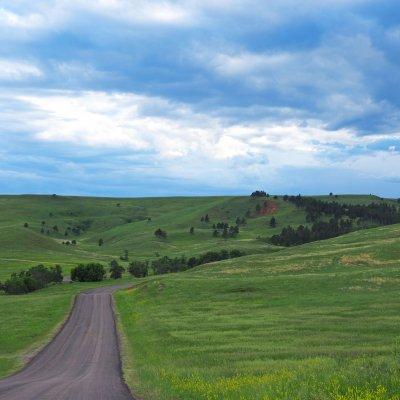 Voorvertoning Nebraska