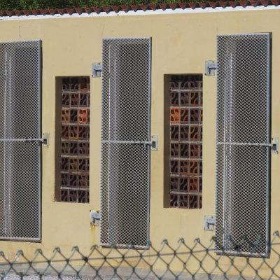 Voorvertoning Een van de vele (heel kleine) cellen