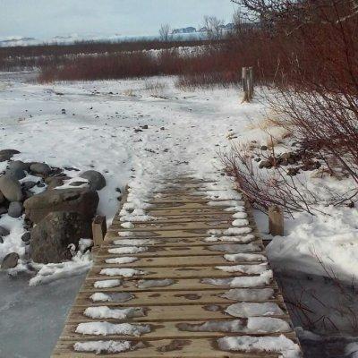 Voorvertoning Trails lopen in de winter is echt en aanrader! Let wel even op de weersverwachting, wij kwamen midden in een sneeuwstorm terecht, beetje gevaarlijk (: