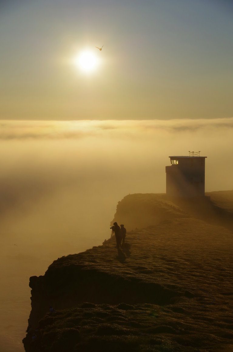 Hoofdfoto bij reisverhaal 'Puffins in the mist'