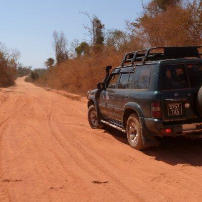 Voorvertoning Madagaskar heeft terecht de naam van Het Rode Eiland