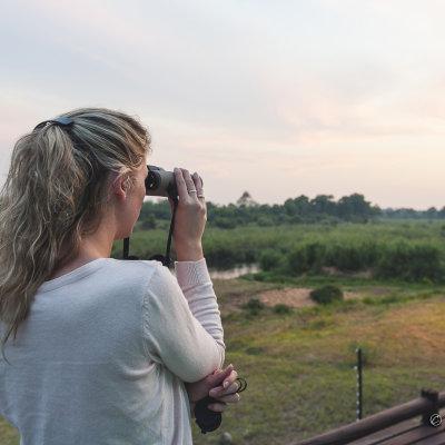 Voorvertoning Stefanie kijkt met de Swarovski verrekijker naar de Olifanten in het Krugerpark.