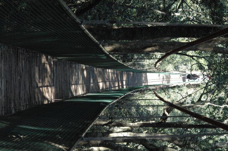 De hangbrug over van 1km