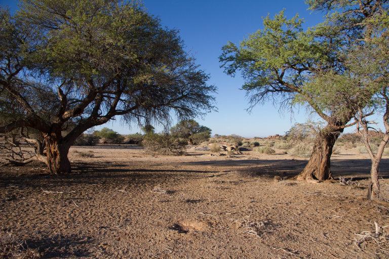 Landschap van Gondwana, tijdens de wandeling