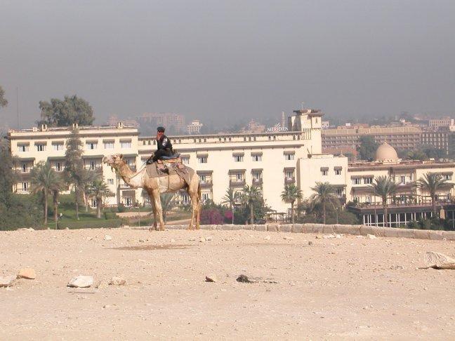 politie per kameel