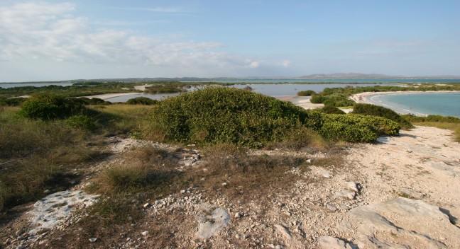 Punta Jagüey