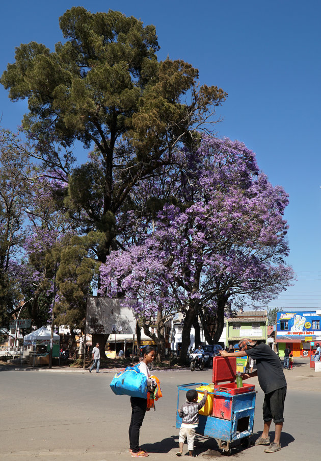 Fietsen in Antsirabe