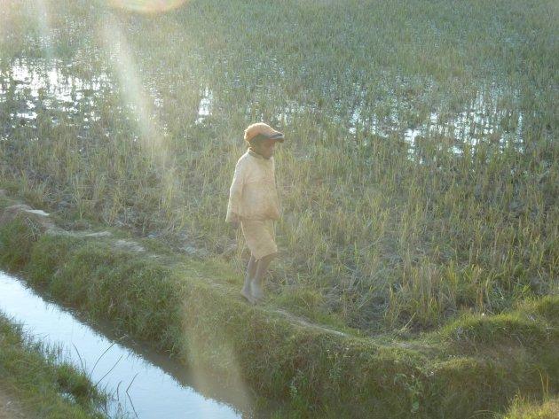 De zon valt op het jongetje bij Tana