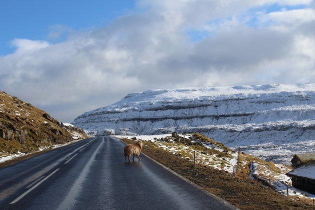 Onvoorspelbaar Faeröer