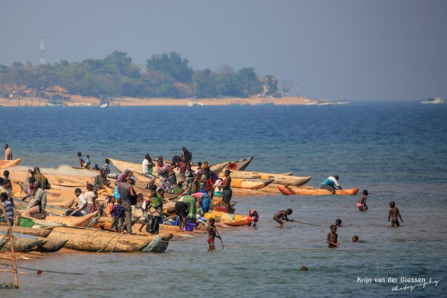 De levendige kust van Lake Malawi