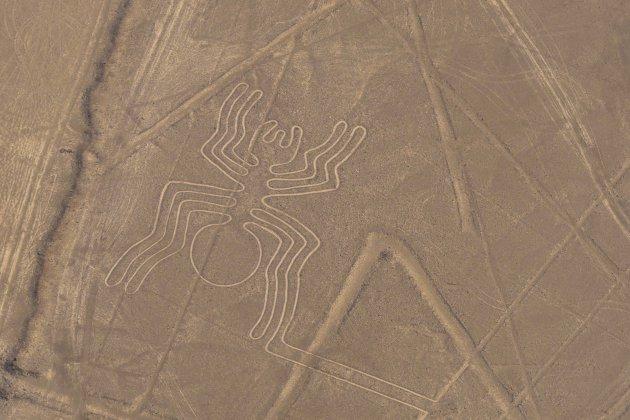 Nazca lijnen - de spin