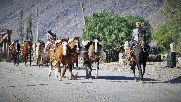 Paardrijden  in Tilcara