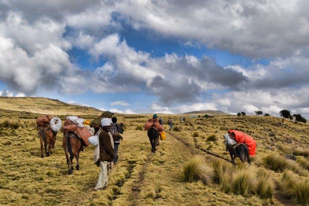 Het Ethiopisch Hoogland!