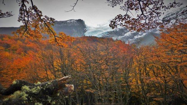Herfst en gletsjers