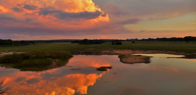 Spiegeling  in meertje, Wetlands in Entabeni