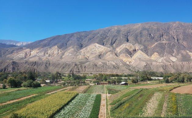 Humahuacavallei