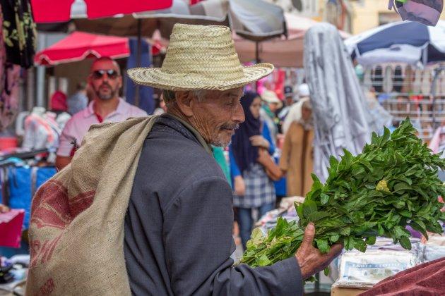 Groente inkopen in Meknes