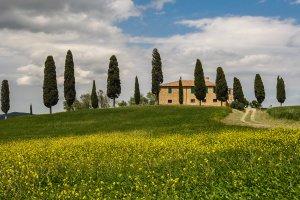 In 't hart van Toscane...