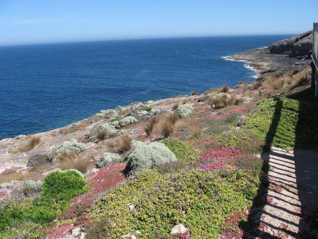Cape de Couedic