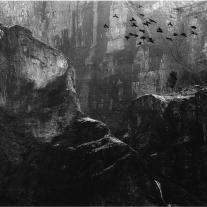 '91591' door Rudi Van Gestel