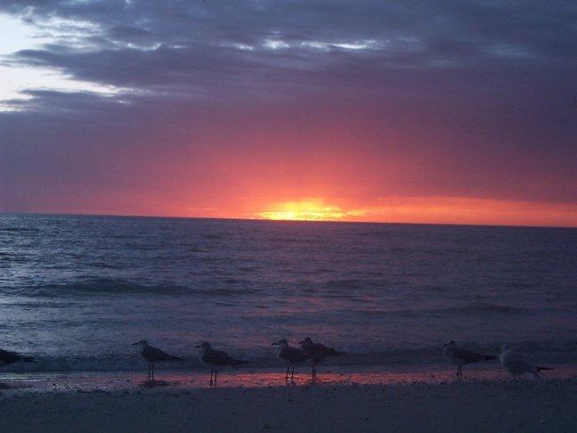 de laatste zonsondergang