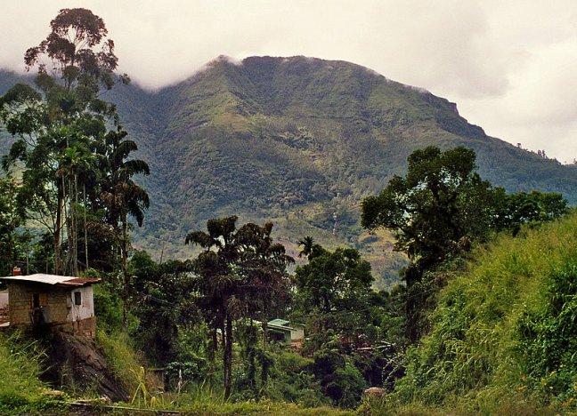 Berg En Dal