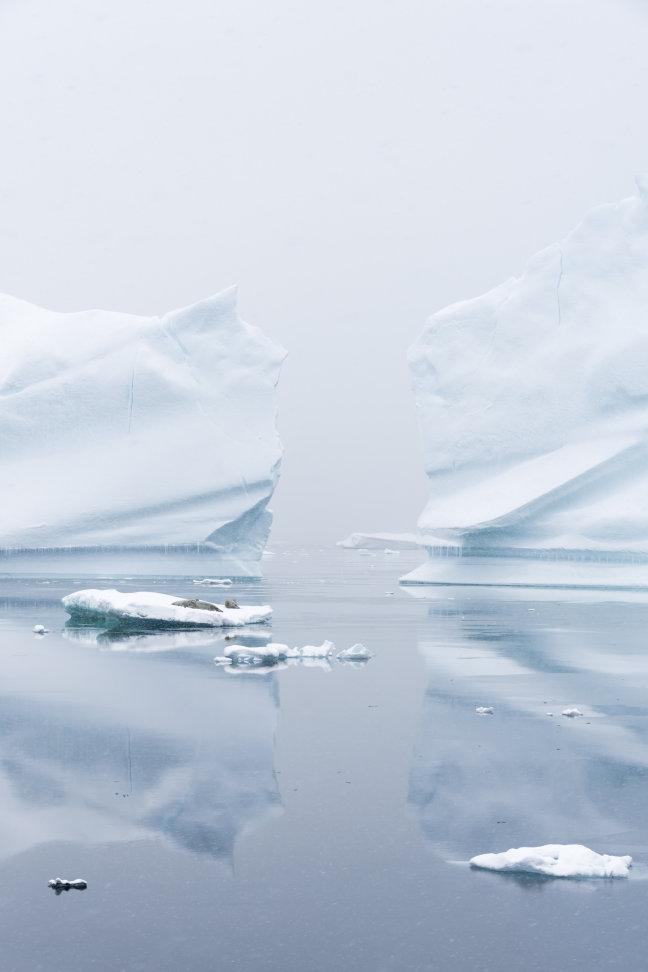 Witte wereld van Antarctica