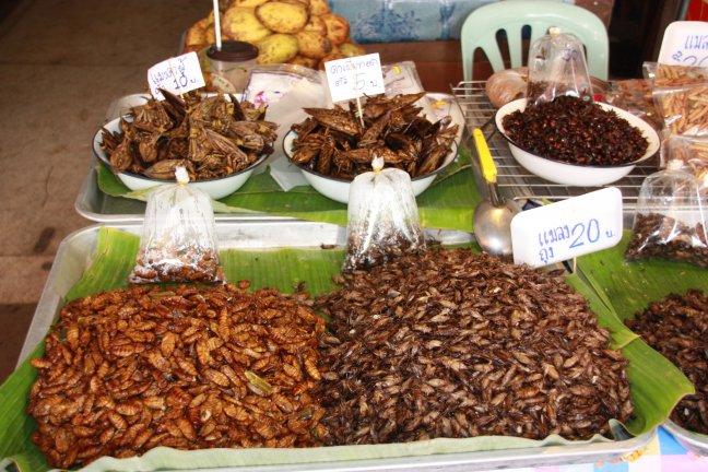 2008: Mae Malai: insekten op de markt.
